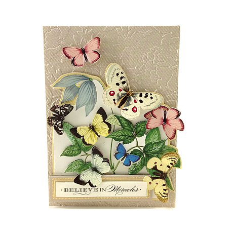 anna-griffin-antique-botanical-die-cut-collection-d-20140722131408467-355725_alt1