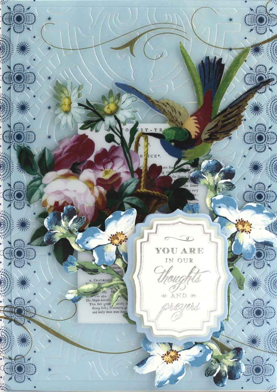 f5213926dc9a Our Vintage Garden Diecuts coordinate beautifully with the Acetate Cards  for All Occasions. The gorgeous images you will find on the cards are  printed in ...